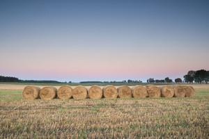 Stubble field landscape. Polish after harvest landscape