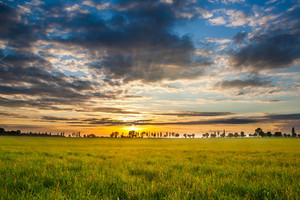Beautiful early summertime landscape with sunset over green field