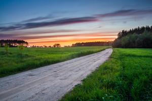 Beautiful rural landscape with sandy road near fields