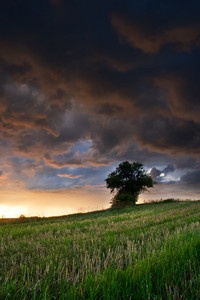 Natural landscape with the storm