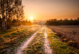 Beautiful landscape with rural sandy road at sunrise