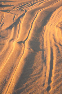 Background of close up sand structures with ripples made by wind