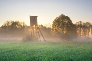Foggy meadow landscape with raised hide at sunrise