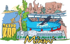 Miami Vector Doodle