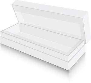 Modern Box Vector