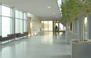 Modern Hotel Corridor 299
