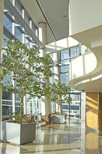 Modern Hotel Interior 300