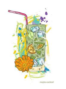 Mojito Cocktail Vector  Illustration
