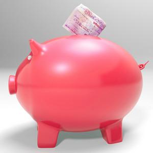 Money Entering Piggybank Shows Saving Incomes
