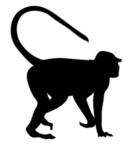 Monkey Animal Silhouette