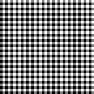 Monochrome Black And White Plaid Pattern