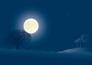 Lune Nuit. Vector Illustration.