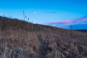 Moonrise over rural wild field or grassland. Blue hour