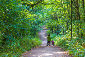 Mother with stroller and baby walking by summer forest path. People from behind