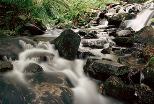 Mountain River. A Stream Of Water In Forest And Mountain Terrain