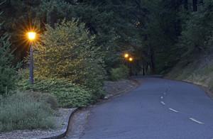 Mountain Road 304