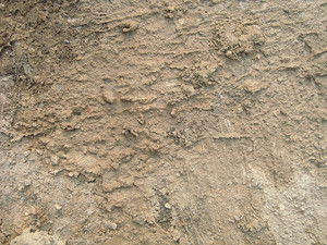 Mud_background