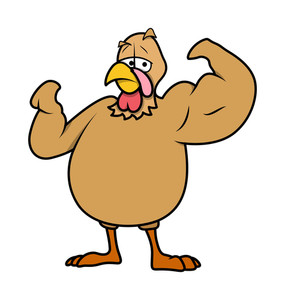 Muscular Turkey Bird Vector
