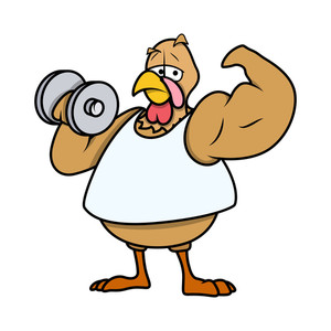 Muscular Turkey Bird