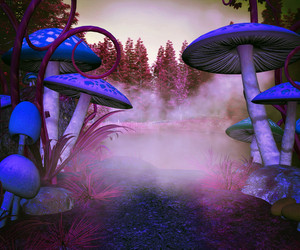 Mushrooms Magic Background