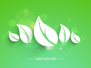 Nature Background With Leaves On Shiny Green Background.