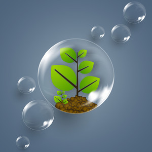 Nature Background With Small Green Plant And Water Bubbles On Grey Background