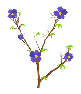 Nature Flowers Branches Vector