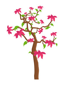 Nature Pink Flowers Tree