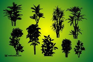 Nature Vector Silhouettes