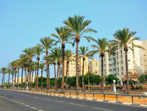 Netanya city