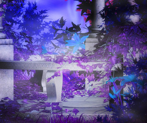 Night Magic Garden Background