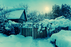 Night rural snowy landscape. Ukrainian village