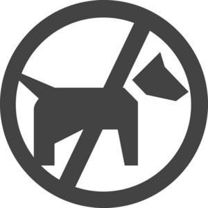 No Dog Glyph Icon