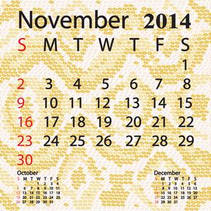 November 2014 Calendar Albino Snake Skin