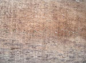 Oak_texture