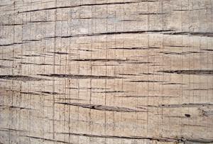 Oak_wooden_texture