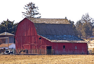 Old Barn Cabin
