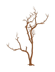 Old Dead Tree Design