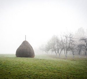 Old european traditional hay stacks, typical rural scene in autumn
