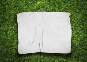 Old Fabric On Grass