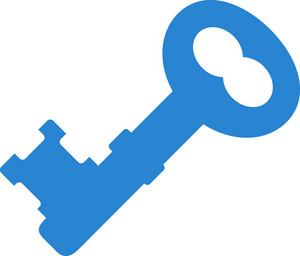 Old School Key Simplicity Icon