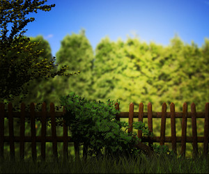 Old Wooden Fence Green Background