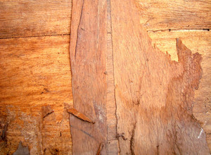 Old_plywood