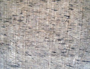 Old_wood_surface_background