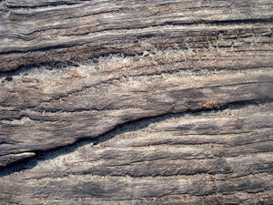 Old_wooden_texture_background