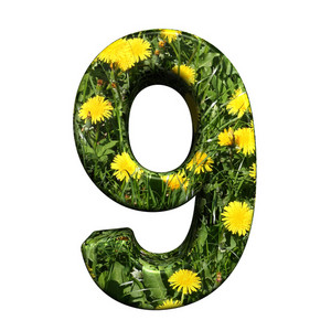 One Digit From Floral Alphabet Set