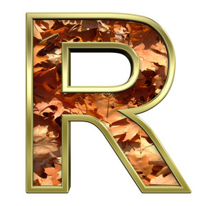 One Letter From Autumn Gold Alphabet Set