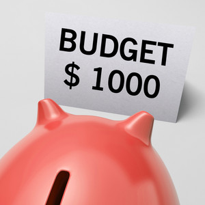 One Thousand Dollars, Usd Budget Shows Limitations