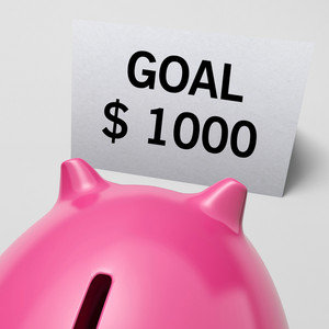 One Thousand Dollars, Usd Goal Showing Ambition