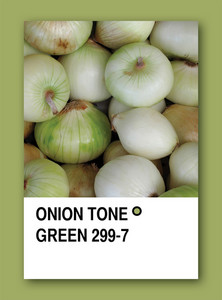 Onion Tone Green. Color Sample Design